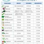Veggie Cooking Cheat Sheet Graphic