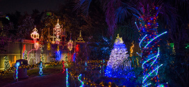 Zoo lights is back at the Houston Zoo with 2 million lights!