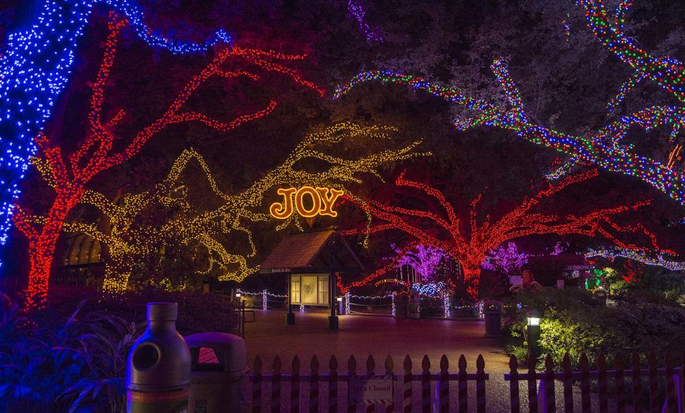 zoo-lights-houston-2013-holidays