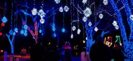 Win tickets to the 13th Annual Festival of Lights event at Moody Gardens
