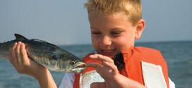 Field Trip: Fresh Fish Finds on the Coast