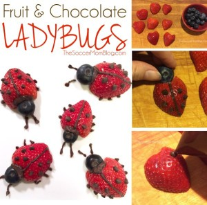 Strawberry-Chocolate-Fruit-Ladybugs-J
