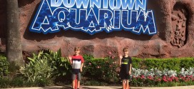 Summer Day at The Downtown Aquarium