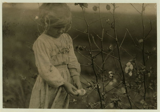 October, 1913 - Houston, Texas. Millie, a 4-year-old cotton picker, on farm near Houston. She picked about eight pounds of cotton a day. Photo and caption by Lewis Wickes Hine