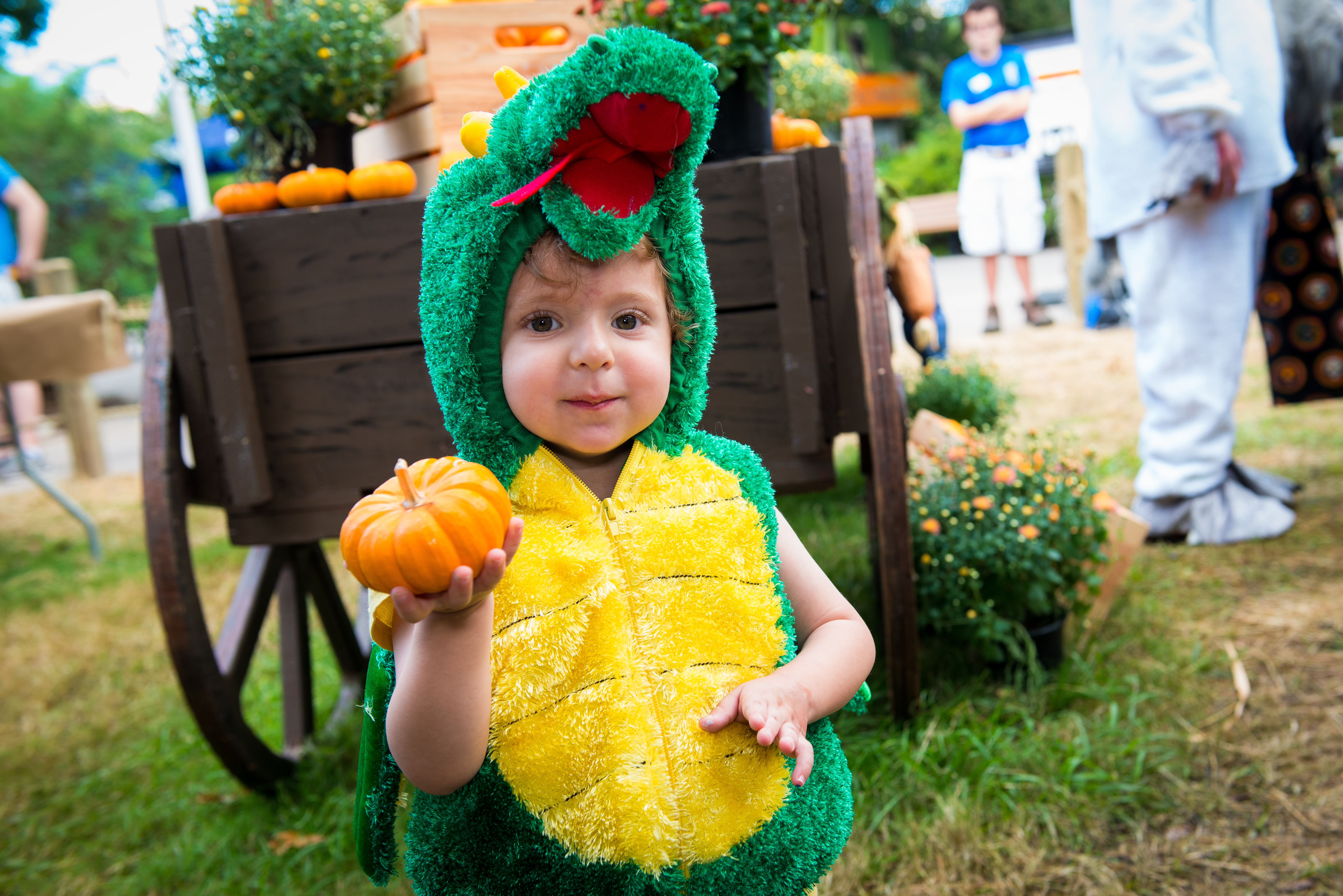 Zoo Boo at the Houston Zoo  sc 1 st  Houston Family Magazine & Fall Events in Houston Pumpkin Patches and Halloween 2016   Houston ...
